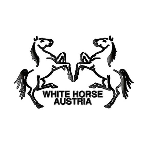 دو اسب